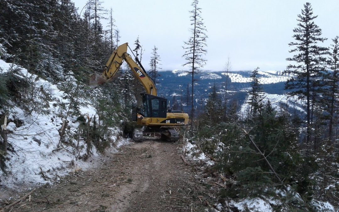Road Construction at Birch Creek