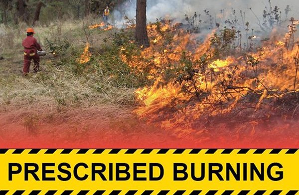 Prescribed Burn to Happen on Goat Mountain